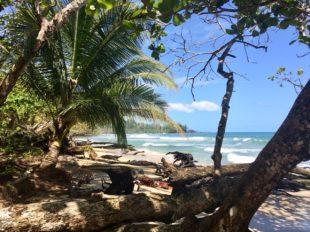 Panama Bocas del Toro Isla Bastimentos
