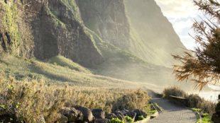 Begraste Tiefebene auf Madeira unterhalb von Achadas da Cruz
