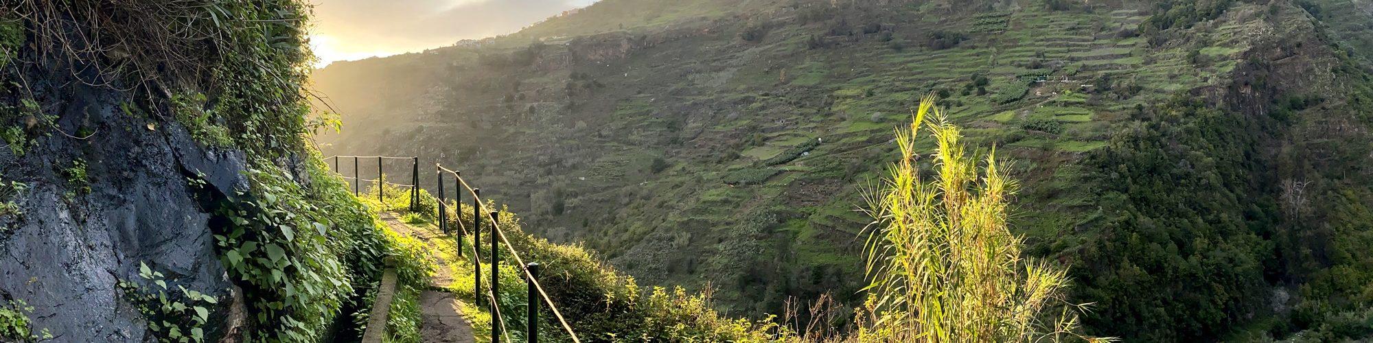 Madeira Levada do Moinho Levada Nova
